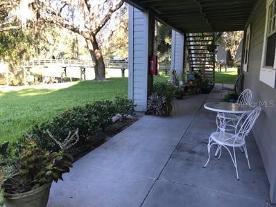 11902 Skylake Place UNIT 11902, Temple Terrace, FL 33617 - #: T3136343