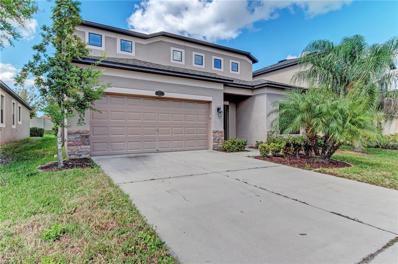 11517 Blue Crane Street, Riverview, FL 33569 - #: T3137619