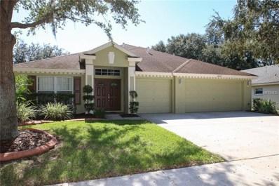 18245 Collridge Drive, Tampa, FL 33647 - #: T3137830