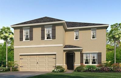 14113 Arbor Pines Drive, Riverview, FL 33579 - #: T3138244