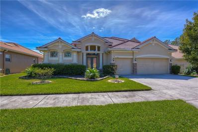 11644 Belle Haven Drive, New Port Richey, FL 34654 - #: T3138362