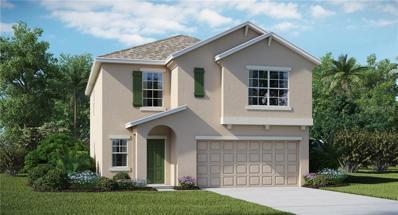 11113 Hudson Hills Lane, Riverview, FL 33579 - #: T3139260