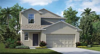 13906 Arbor Pines Drive, Riverview, FL 33579 - #: T3139264