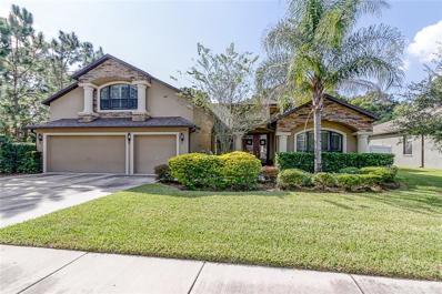 15704 Altolinda Lane, Tampa, FL 33624 - #: T3140360