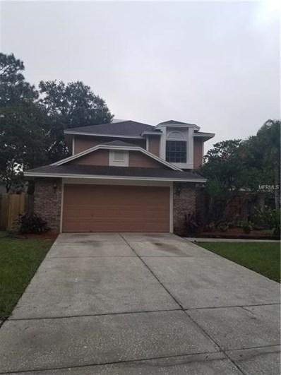 15111 Craggy Cliff Street, Tampa, FL 33625 - #: T3140782