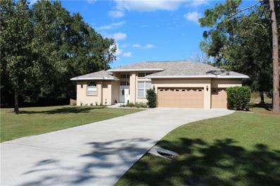 27817 Arlington Road, Wesley Chapel, FL 33544 - #: T3140838