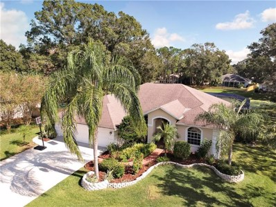 16901 Raven Ridge Place, Lutz, FL 33549 - #: T3141457
