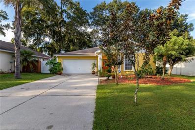 8536 Queen Brooks Court, Temple Terrace, FL 33637 - #: T3141630