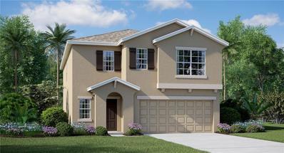 11104 Hudson Hills Lane, Riverview, FL 33579 - #: T3141649