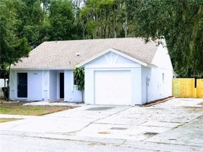 12328 Witheridge Drive, Tampa, FL 33624 - #: T3141984