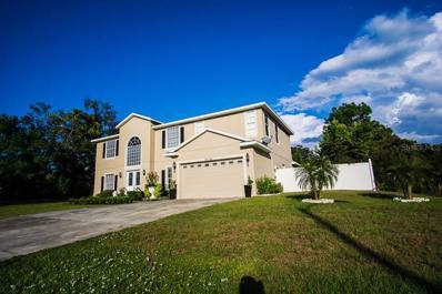 3082 Polk Avenue, Spring Hill, FL 34609 - #: T3142432