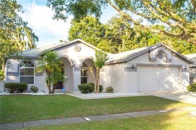 2514 Allwood Avenue, Valrico, FL 33596 - #: T3144254