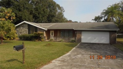 22436 Southshore Drive, Land O Lakes, FL 34639 - #: T3144435