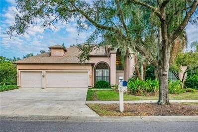 4212 Thistle Terrace Place, Valrico, FL 33596 - #: T3144894