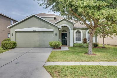 30545 Annadale Drive, Wesley Chapel, FL 33545 - #: T3145032