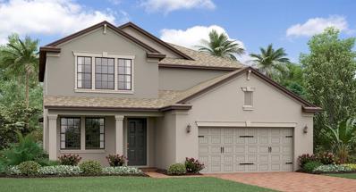 6237 English Hollow Road, Tampa, FL 33647 - #: T3145575