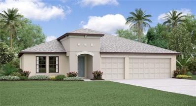 14006 Arbor Pines Drive, Riverview, FL 33579 - #: T3145940