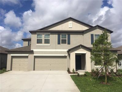 14010 Arbor Pines Drive, Riverview, FL 33579 - #: T3145963