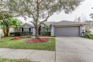 10746 Ayrshire Drive, Tampa, FL 33626 - #: T3149822