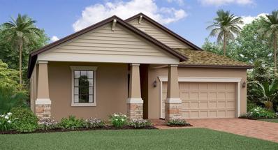 13328 Wildflower Meadow Drive, Riverview, FL 33579 - #: T3150523