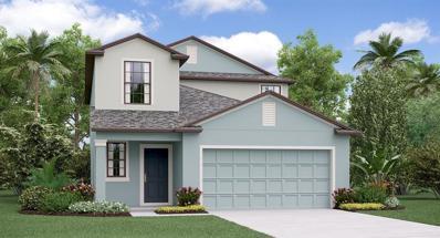 15324 Broad Brush Drive, Ruskin, FL 33573 - #: T3157413