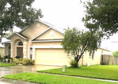 25129 Seven Rivers Circle, Land O Lakes, FL 34639 - #: T3157750