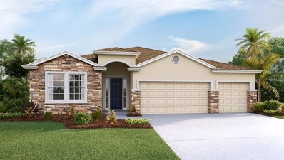 2537 Knight Island Drive, Brandon, FL 33511 - #: T3161866