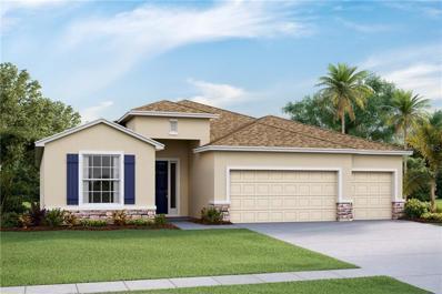 2539 Knight Island Drive, Brandon, FL 33511 - #: T3161908