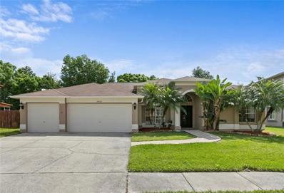 16009 Muirfield Drive, Odessa, FL 33556 - #: T3165249