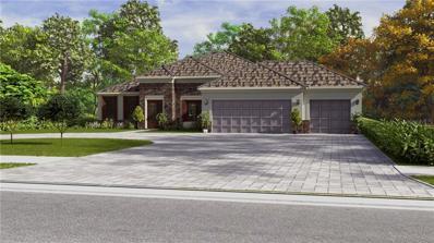 27419 Elkwood Circle, Wesley Chapel, FL 33544 - #: T3167584