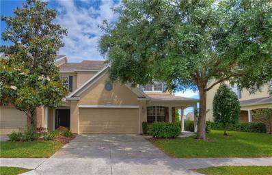 10132 Haverhill Ridge Drive, Riverview, FL 33578 - #: T3170169