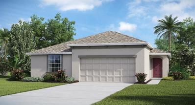 17134 Sunshine Mimosa Street, Wimauma, FL 33598 - #: T3178429