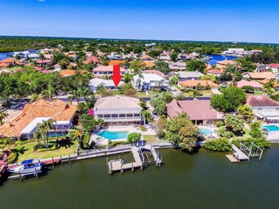 7113 Pelican Island Drive, Tampa, FL 33634 - #: T3179638