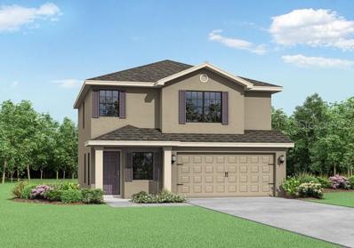 6501 Firespike Court, Brooksville, FL 34602 - #: T3191902