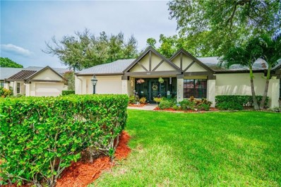 915 Hickory Hill Court, Palm Harbor, FL 34684 - #: T3193669