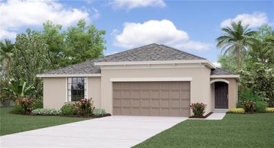 14620 Scottburgh Glen Drive, Wimauma, FL 33598 - #: T3197001