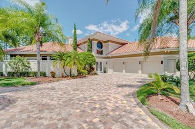 19004 COUR Estates, Lutz, FL 33558 - #: T3197480