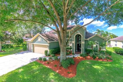 22850 COLLRIDGE Drive, Land O Lakes, FL 34639 - #: T3197787