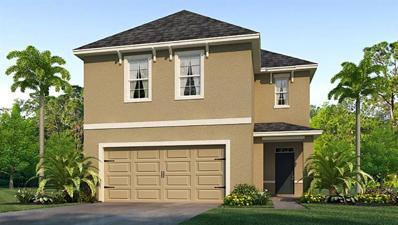 8148 Pelican Reed Circle, Wesley Chapel, FL 33545 - #: T3203390