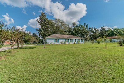 11622 VALLEY Road, Dade City, FL 33525 - #: T3208194