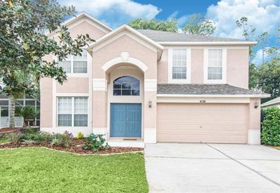 4129 TARKINGTON Drive, Land O Lakes, FL 34639 - #: T3213532