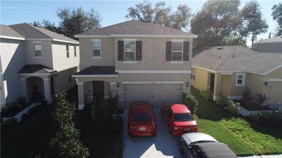 3513 WINTERBERRY Lane, Valrico, FL 33594 - #: T3223546