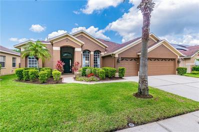 12430 BRISTOL COMMONS Circle, Tampa, FL 33626 - #: T3244921