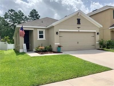 125 LACEWING Place, Valrico, FL 33594 - #: T3250952