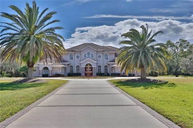 2270 N Highland Avenue, Tarpon Springs, FL 34688 - #: U7842502