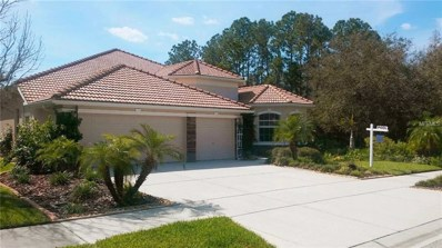 11638 Belle Haven Drive, New Port Richey, FL 34654 - #: U8007389
