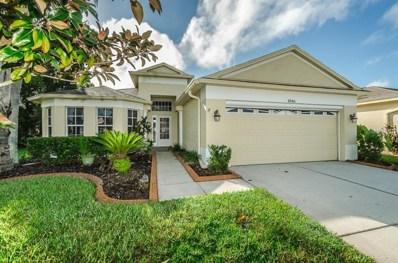 1046 Dustan Place, Trinity, FL 34655 - #: U8017149