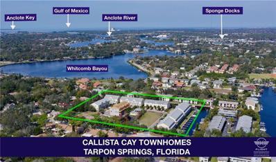 833 Callista Cay Loop UNIT 60, Tarpon Springs, FL 34689 - #: U8018540