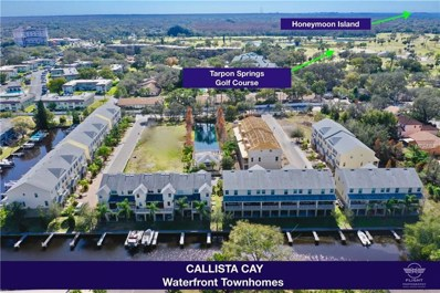 874 Callista Cay Loop UNIT 38, Tarpon Springs, FL 34689 - #: U8018562