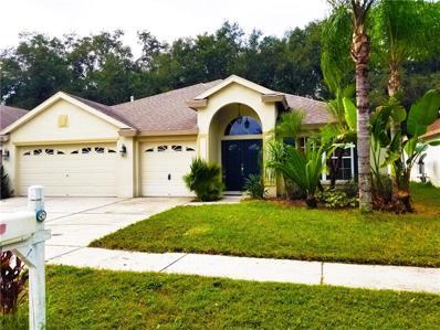 10544 San Travaso Drive, Tampa, FL 33647 - #: U8021337